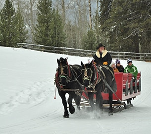 Sleigh rides in Jackson Hole
