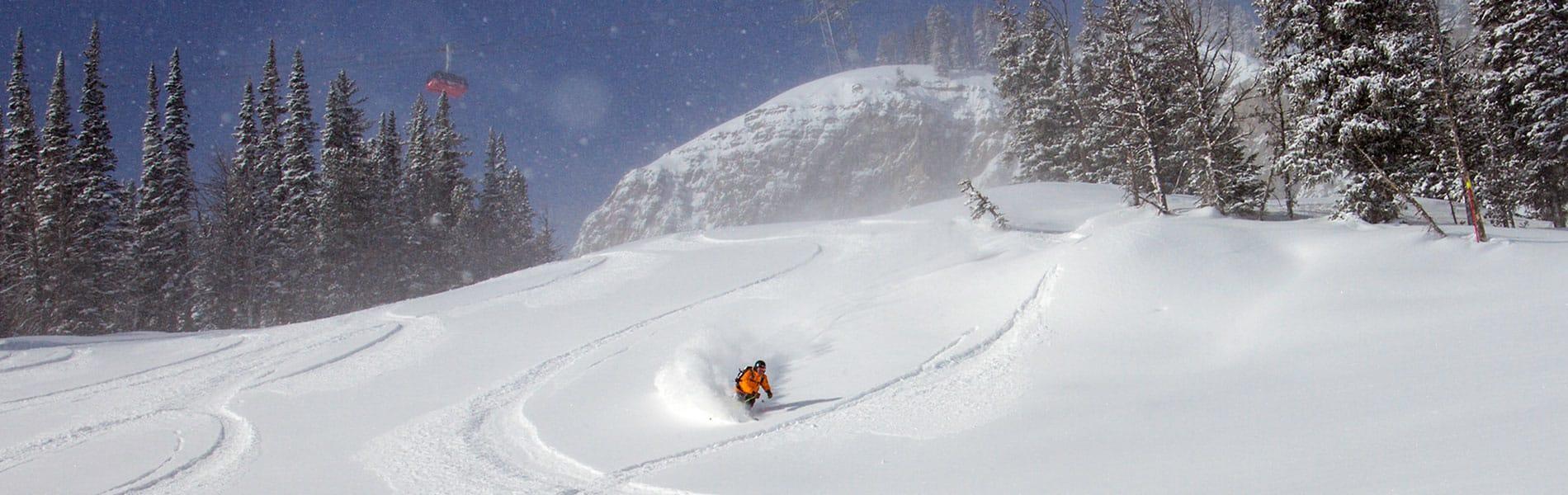 Fresh powder skiing in Jackson Hole