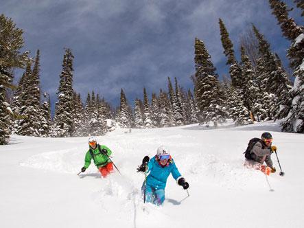 Three skiers on the Jackson Hole mountain.